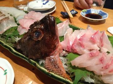 めったに食べられない幻の魚「クエ」を刺身と鍋でいただきました!